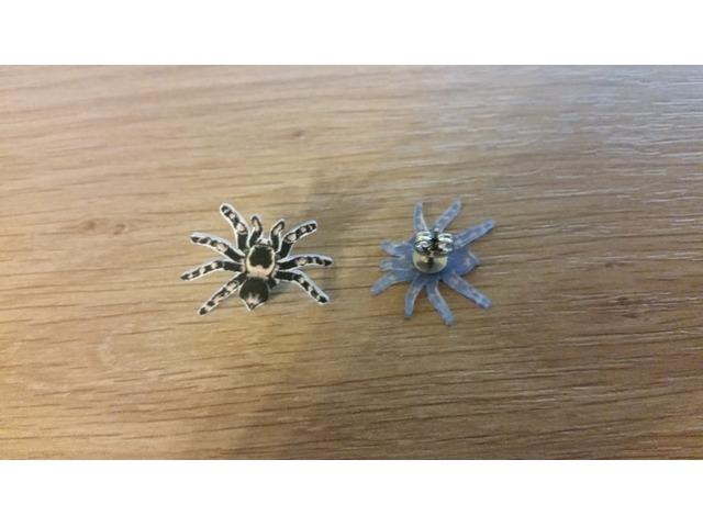 Naušnice pauk