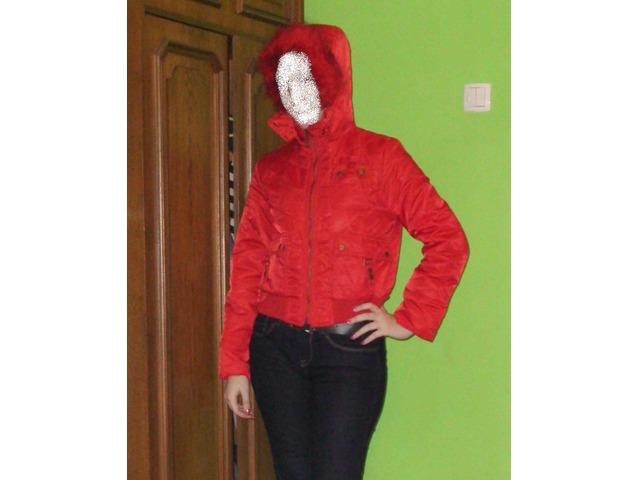 kratka crvena jaknica