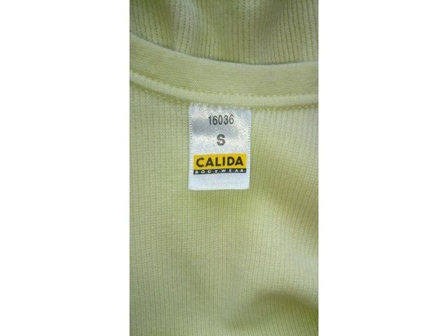 NOVI Calida body