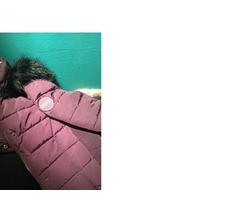 NOVA Champion zimska jakna